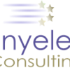 Tinyeleti Consulting (Pty) Ltd